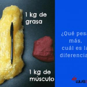 masa grasa vs masa magra
